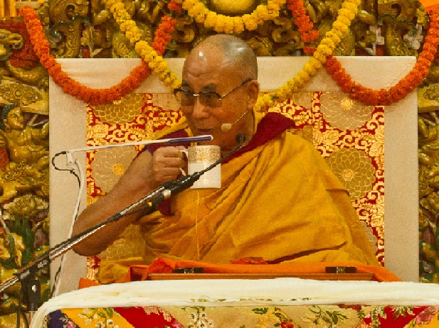 karma-systemik-dalai-lama